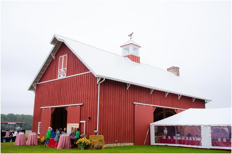 Easton, MD Wedding, Eastern Shore Maryland   Portrait and Newborn photographer   Jennifer Madino   ESLC Party to Preserve
